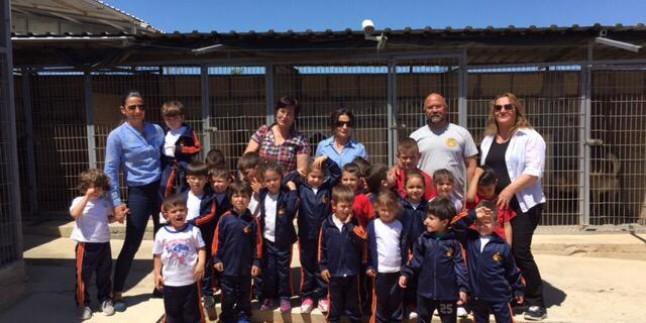 Kreş okulu öğrencilerinin çiftliğimize ziyaretleri