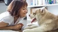 Köpeğin İnsan Yaşamındaki Tarihi